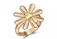 jewellery/welsh-gold-company/